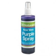 Спрей от мелких порезов, трежин, потертостей, ссадин NaturalintX Aloe Vera Purple Spray, NAF